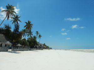 Quelques informations pour vivre une aventure sportive à Zanzibar